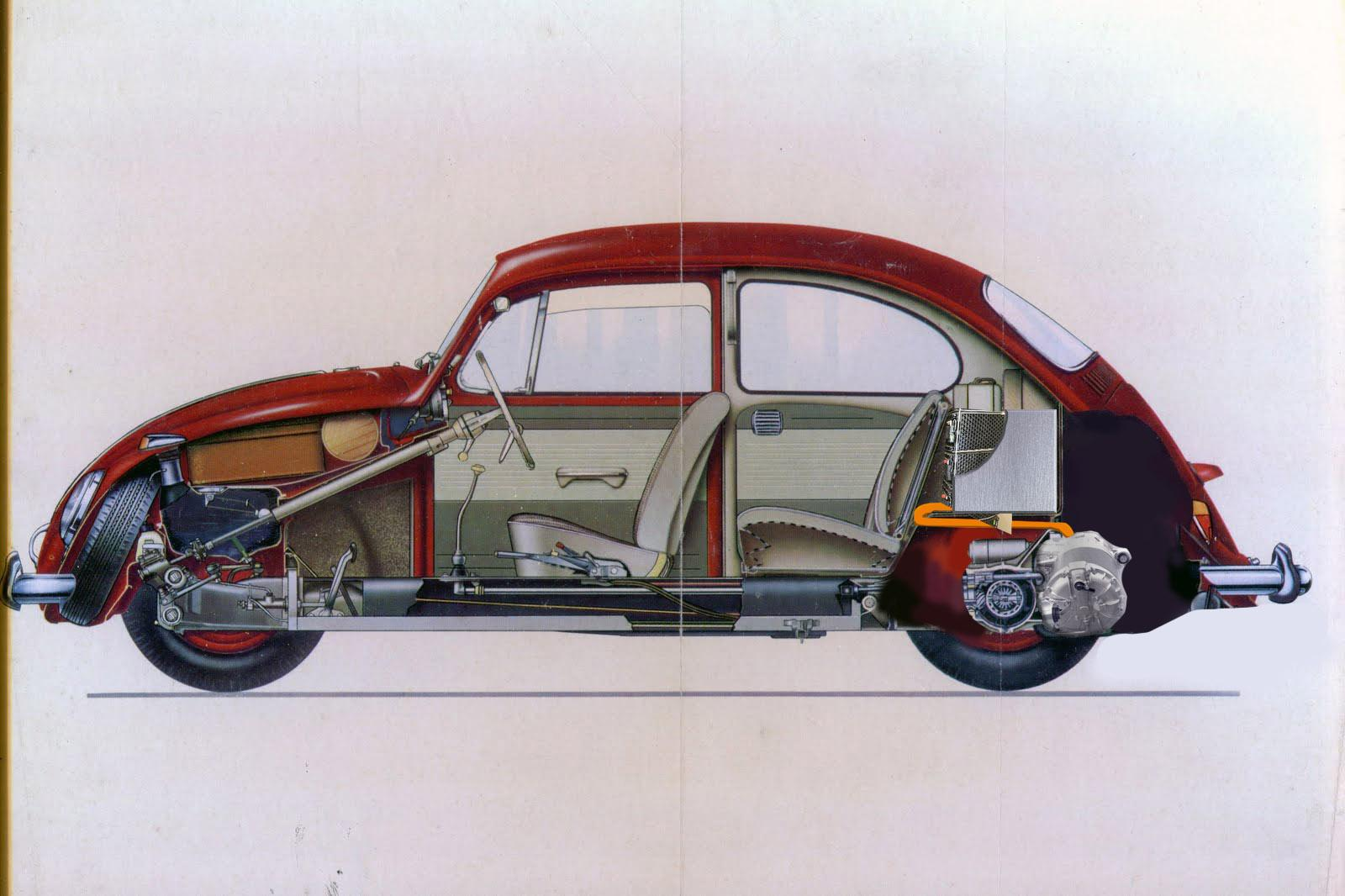cross section ev